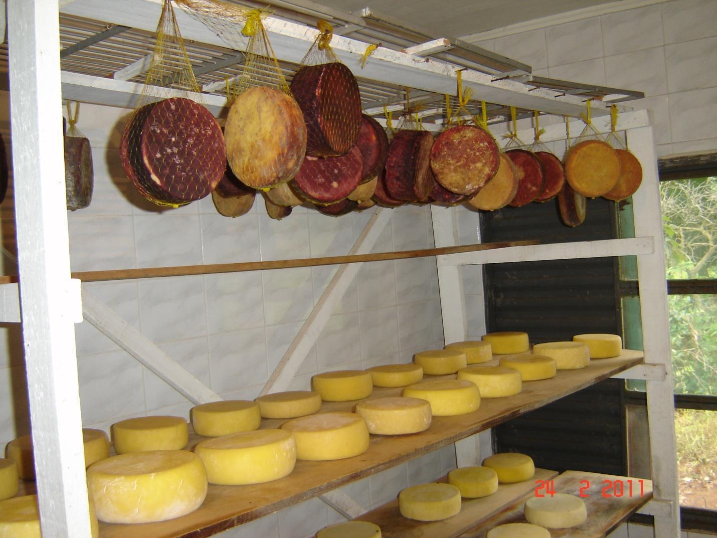 queijo colonial 04