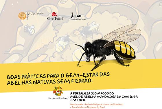 livro abelhas nativas sem ferrao