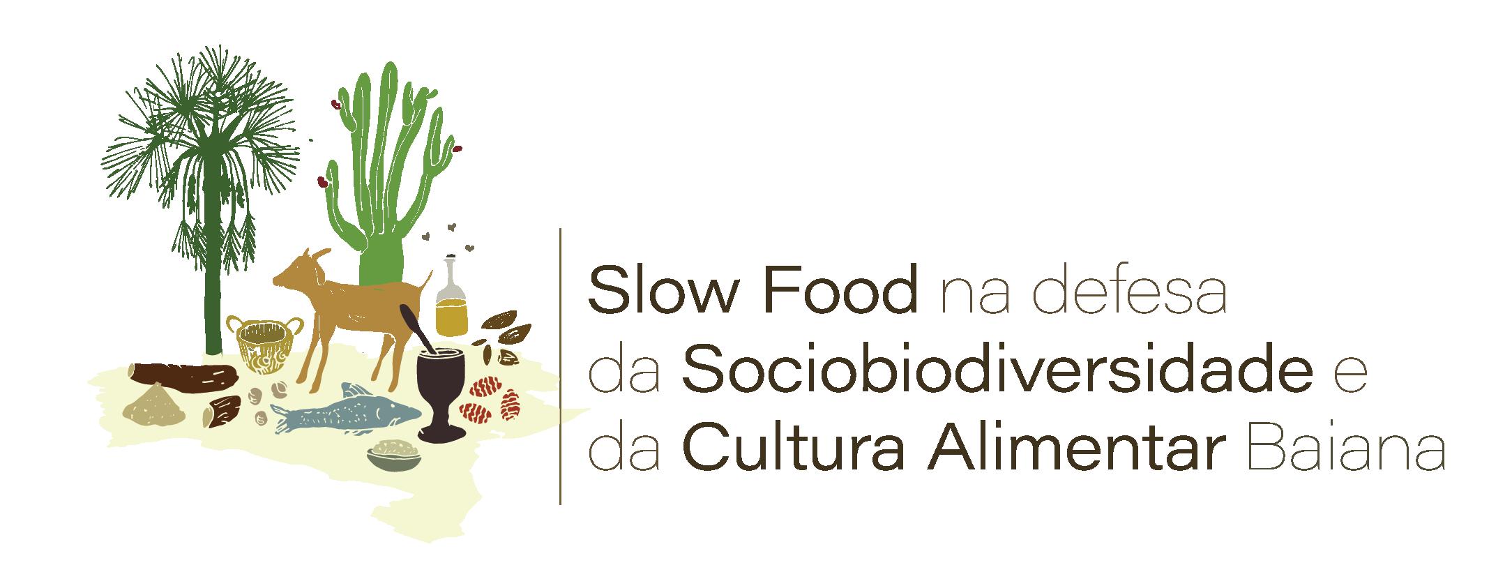 Logo FundoTransparente