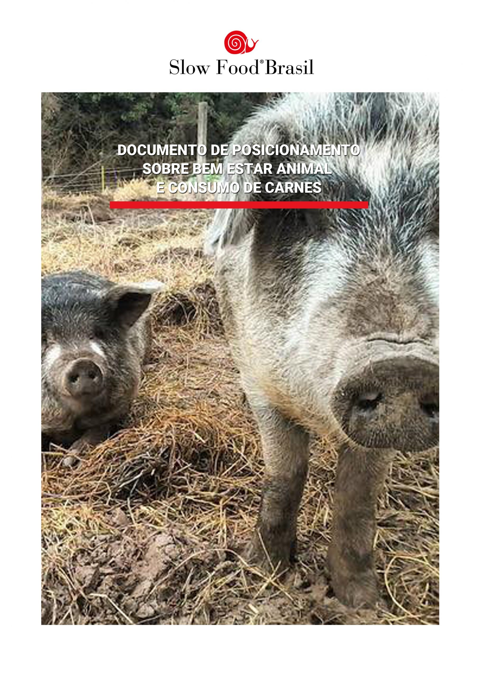 CAPA-BEA-carnes-baixa.jpg