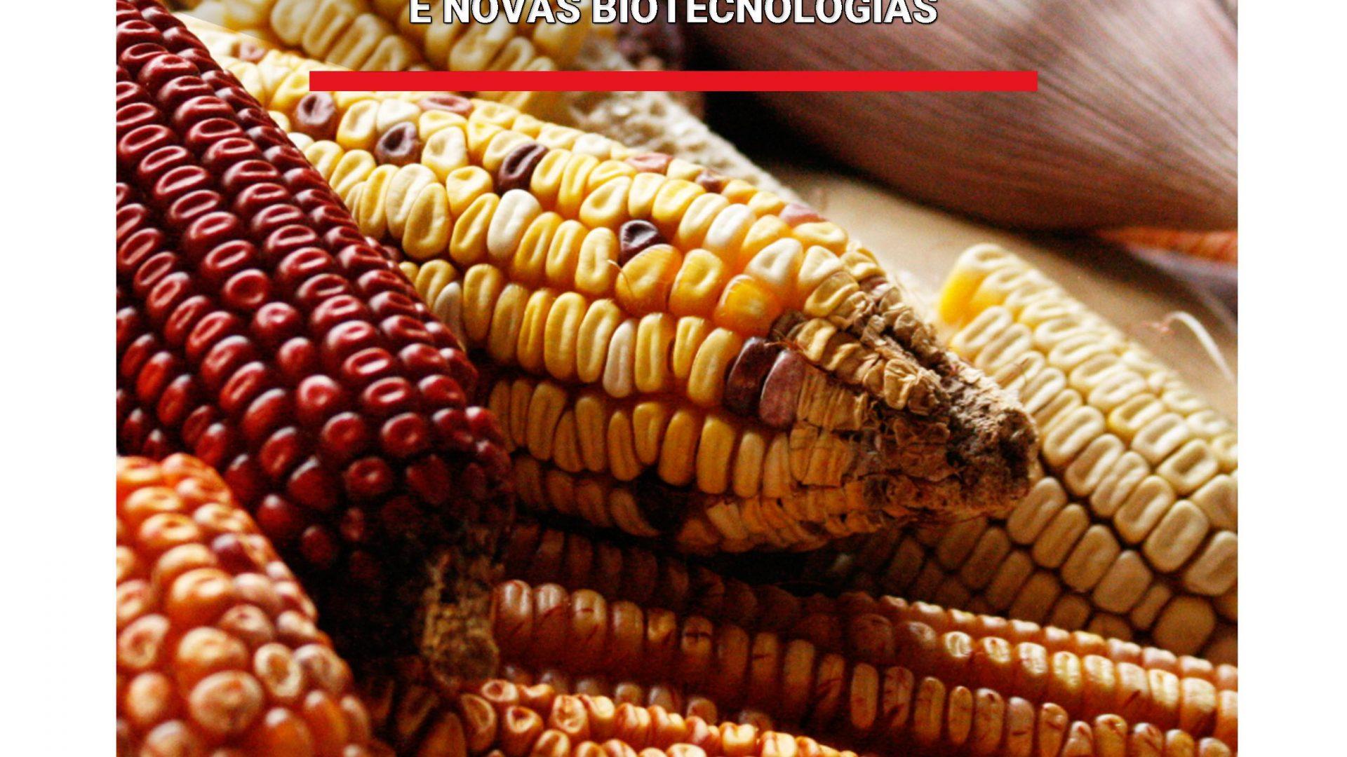 CAPA-sementes-baixa.jpg